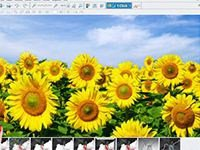 Скачать Magix Photo Designer 7.0.1.1